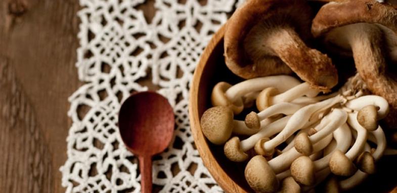 تامین ویتامین دی بدن با استفاده از قارچ