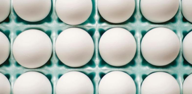 تخم مرغ و دیابت