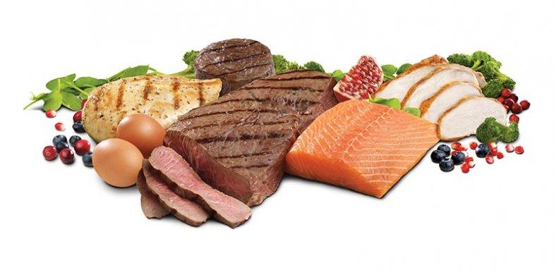 محافظت از قلب و عروق با مصرف پروتئین