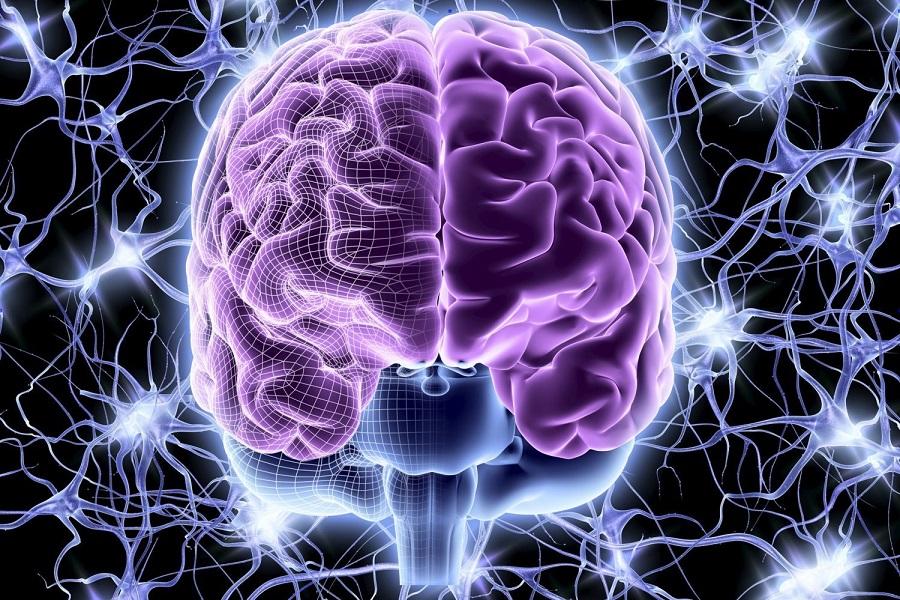 شیمی مغزی از علائم تا علت و عوارض