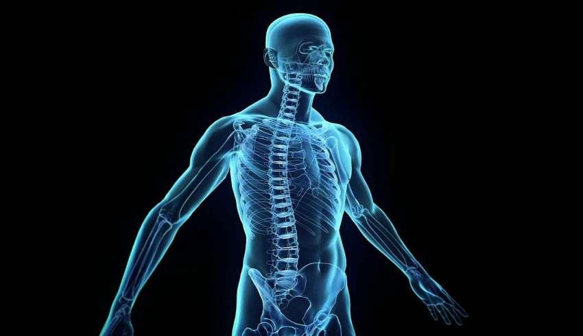 روش های تقویت سیستم ایمنی بدن