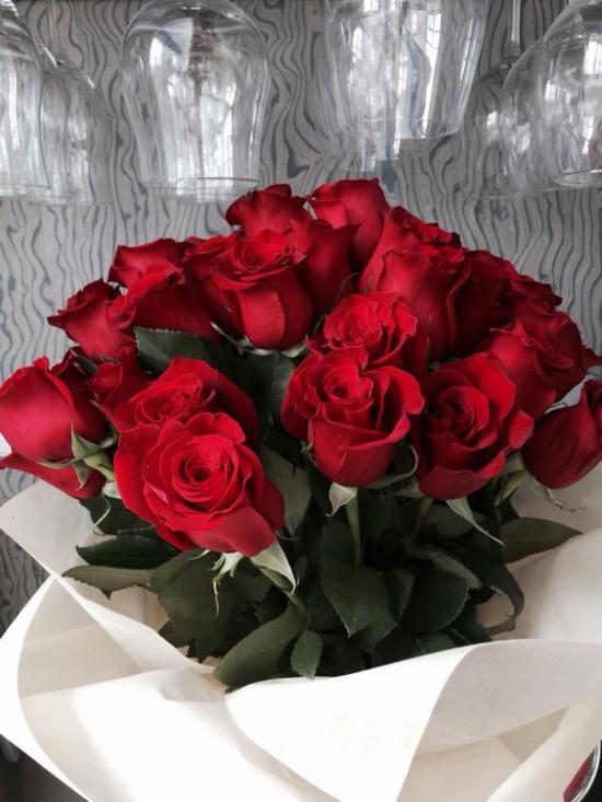 زیباترین تصاویر از گل رز قرمز با طرح های متنوع
