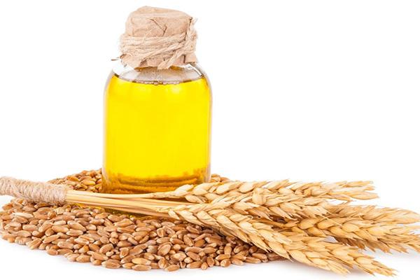خواص شگفت انگیز روغن جوانه گندم بر سلامت