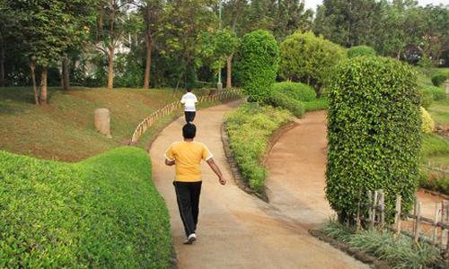 جلوگیری از این بیماری های سخت با پیاده روی