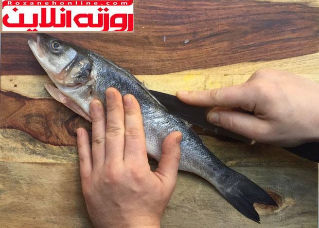 طریقه فیله کردن ماهی تخت و ماهی گرد
