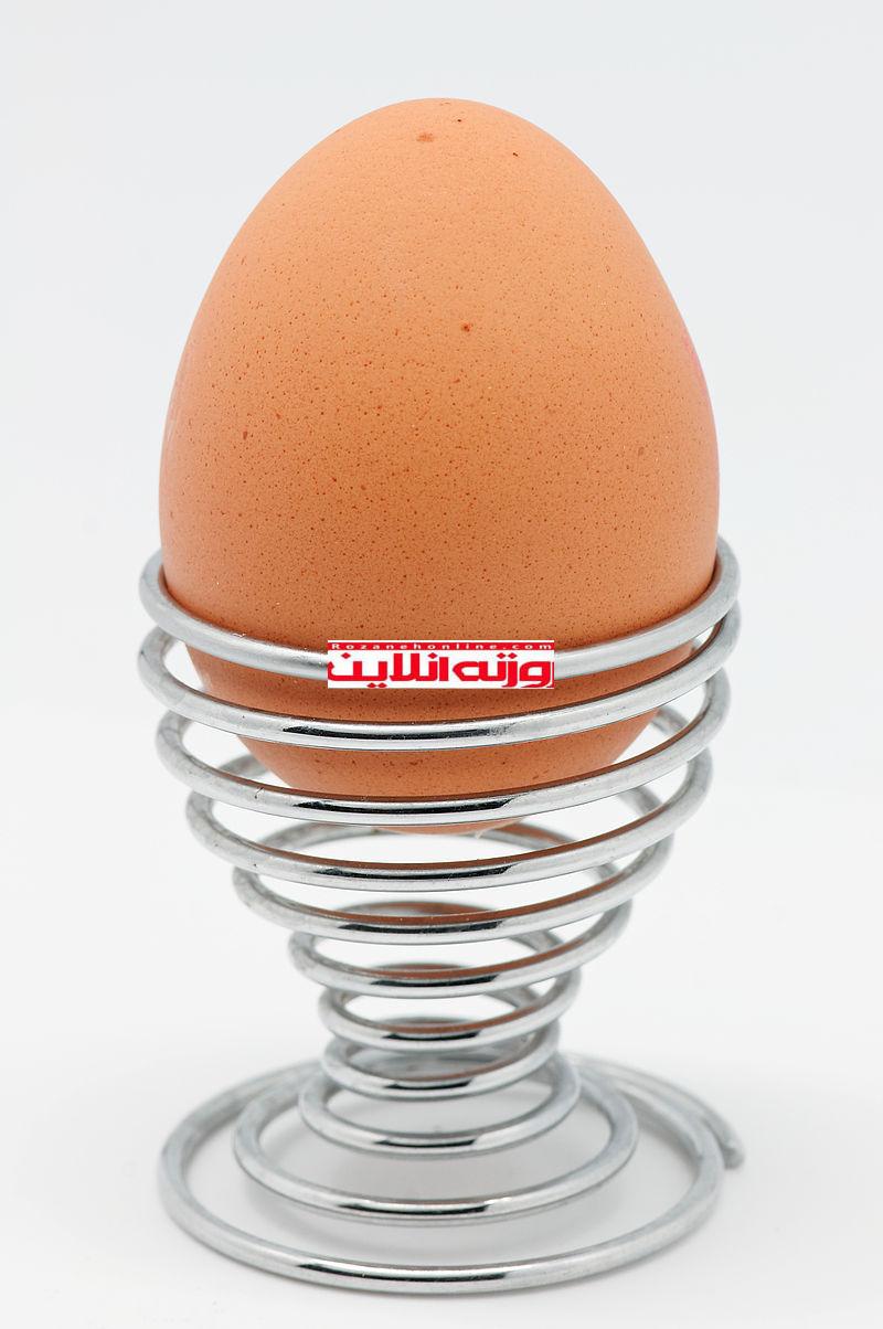 روزهای زمستان را با صبحانه های تخم مرغی آغاز کنید