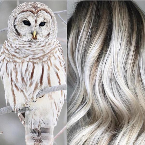 مدل رنگ مو جدید و شیک دوست داشتنی و جذاب